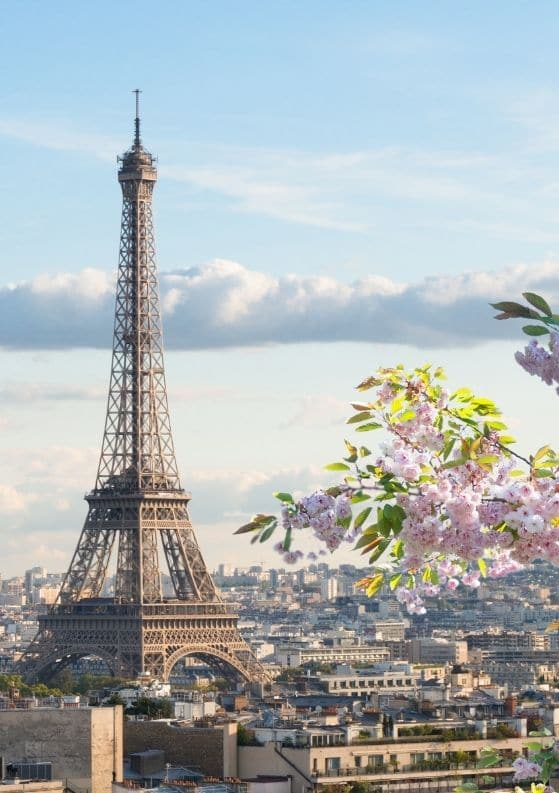 The Top 15 Free Things to Do in Paris