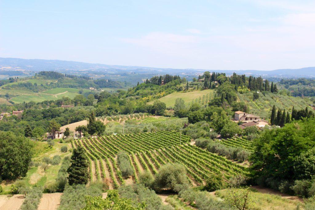 One day in Tuscany: Siena, San Gimignano, Pisa