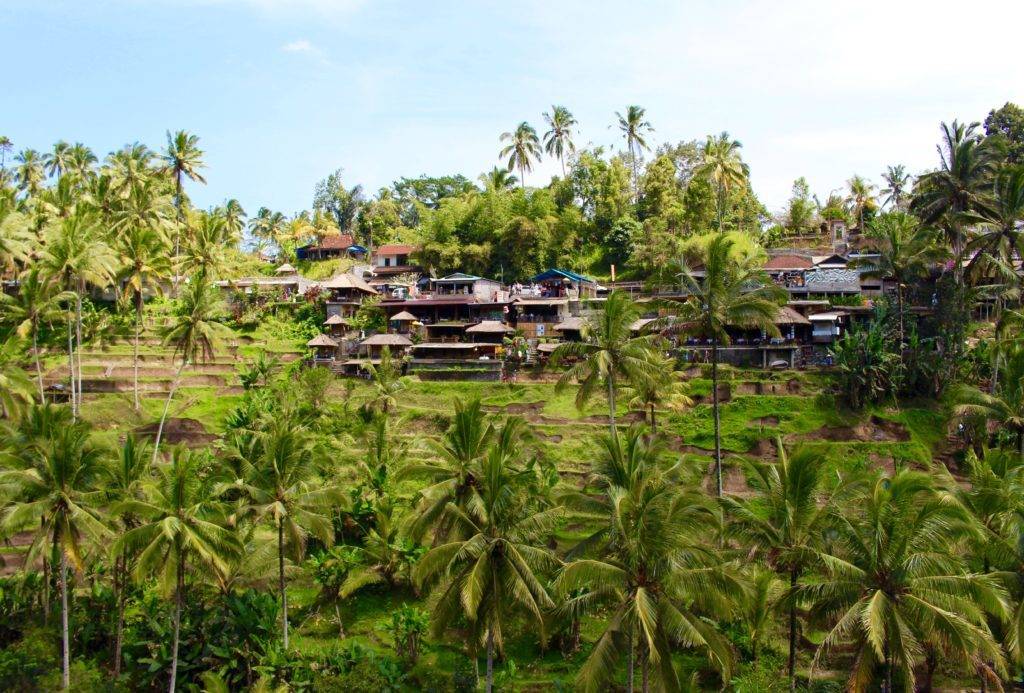 In need of the perfect Bali travel guide? This post details everything you need to know about traveling to Ubud, Bali. Between what to see and do, where to eat, what to pack, and how much everything will cost, this is the ultimate guide. From rafting and practicing yoga, to taking cooking classes and exploring temples, Ubud offers no shortage of amazing things to do and discover. One week in Ubud, Bali is the perfect amount of time to explore everything this beautiful place has to offer!