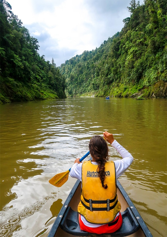 Whanganui River Journey: An Epic 3-Day Canoe Adventure in New Zealand