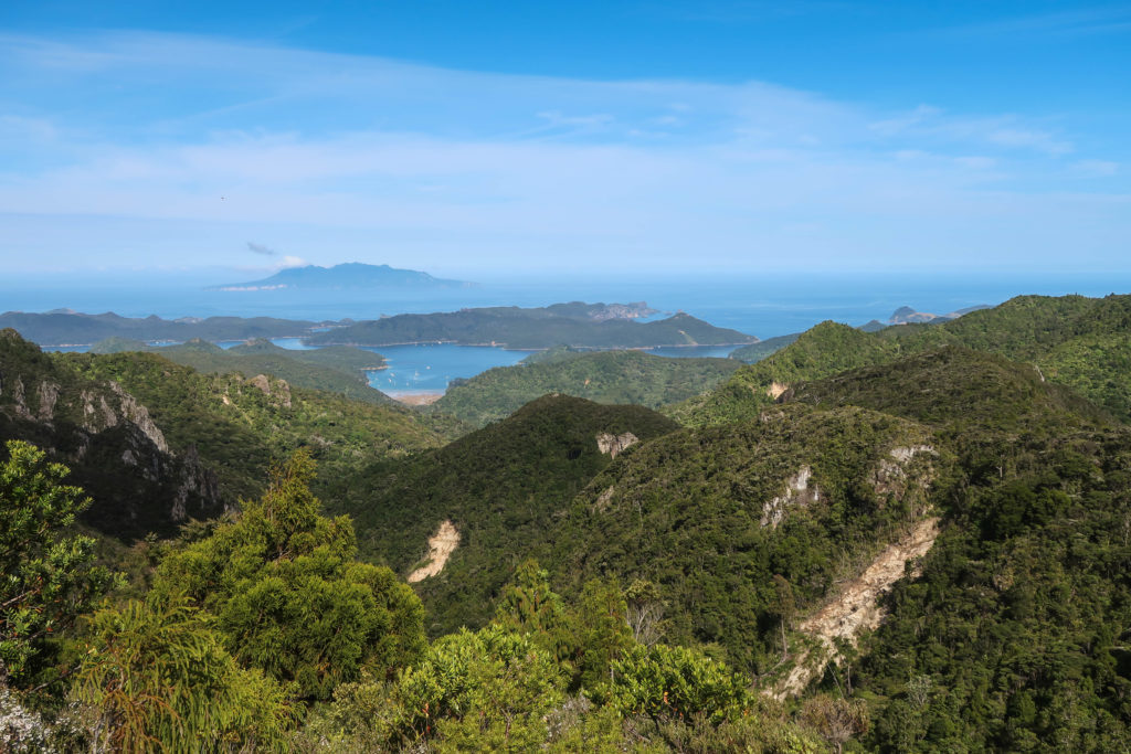 Chances are that you've never heard of Great Barrier Island, New Zealand before. But now that you have, you'll know that you need to go! Between the island's unspoiled beaches, great hiking tracks, unparalleled stargazing, and super-friendly locals, the Barrier is an absolute gem. Here are 10 photos to prove it.
