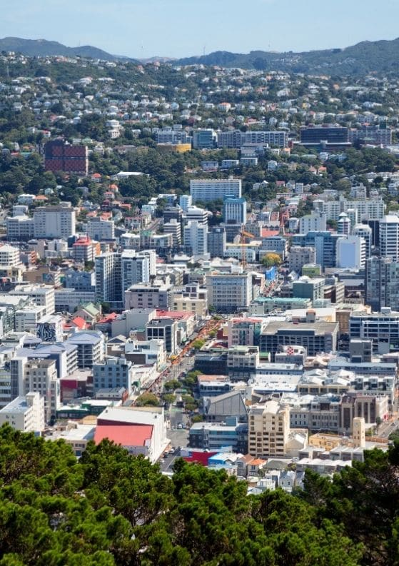 Wellington Foodie Guide: 10 Places to Eat & Drink in Wellington