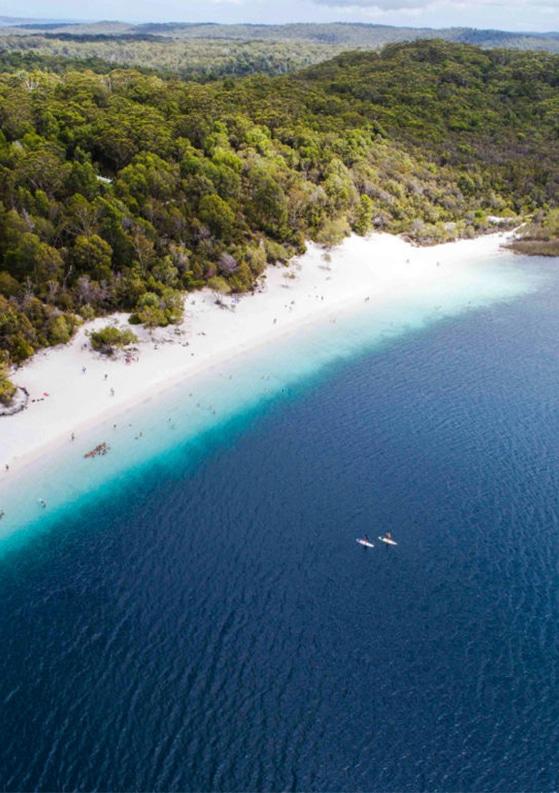 Discovering Australia's Fraser Island with Fraser Explorer Tours