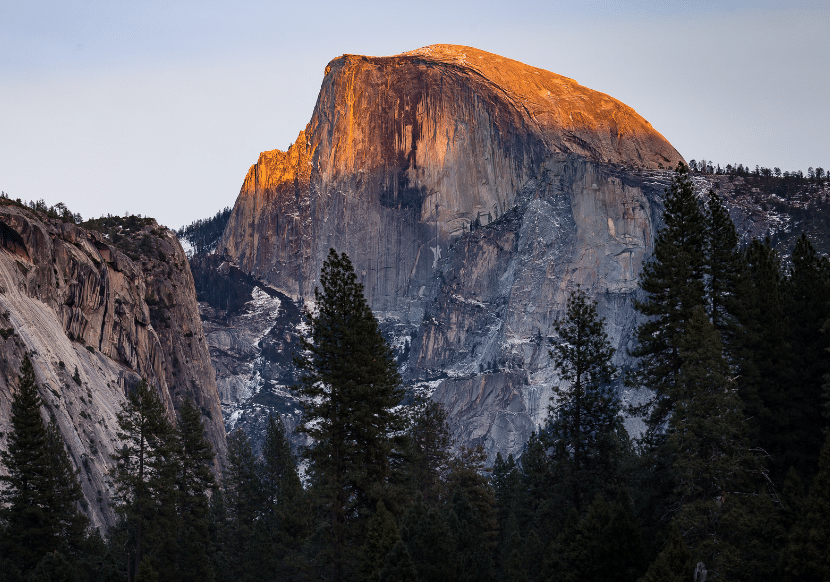 Half dome and pine trees in yosemite national park