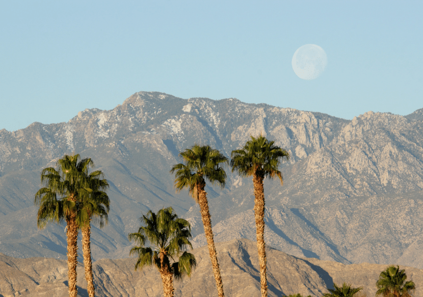 palm springs is the perfect destinations for a girls' trip in california.
